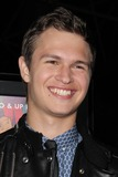 Ansel Elgort Photo 4