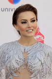 Angelique Boyer Photo 4