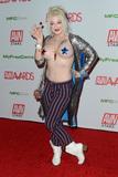 Photo - 2020 AVN (Adult Video News) Awards