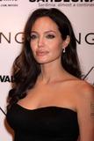Angelina Jolie Photo 4