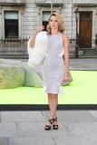 Photo - The Royal Academy Summer Exhibition