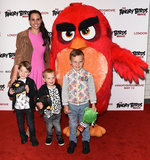 Angry Birds Photo 4