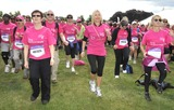 Photos From Pink Ribbon Walk for Breast Cancer