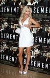 Photo - The Basement UK Premiere