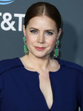 Photo - SANTA MONICA LOS ANGELES CA USA - JANUARY 13 Actress Amy Adams wearing a Zac Posen dress David Webb jewelry an Edie Parker clutch and Jimmy Choo shoes arrives at the 24th Annual Critics Choice Awards held at the Barker Hangar on January 13 2019 in Santa Monica Los Angeles California United States (Photo by Xavier CollinImage Press Agency)