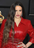 Alexander Wang Photo - LOS ANGELES CALIFORNIA USA - JANUARY 26 Singer Rosalia wearing an Alexander Wang outfit arrives at the 62nd Annual GRAMMY Awards held at Staples Center on January 26 2020 in Los Angeles California United States (Photo by Xavier CollinImage Press Agency)