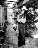Photo - Archival Pictures - Globe Photos - 52986