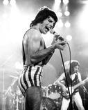 Photo - Queen (Freddie Mercury) Photo by Gary MerrinGlobe Photos Inc