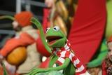 Kermit the Frog Photo 4