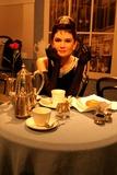 Audrey Hepburn Photo 4