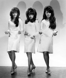 The Ronettes Photo 4